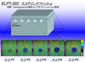 ELPT-002スコアリングファントム
